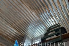InShot_20210504_1402055481