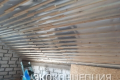 InShot_20210504_1403144241