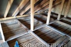 InShot_20210504_1431375101